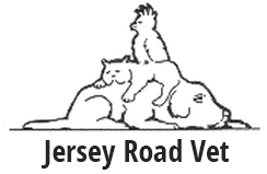 Jersey Road Veterinary Hospital